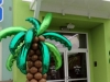 pollotropical-palm-tree