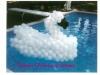 pool-swan-jpg